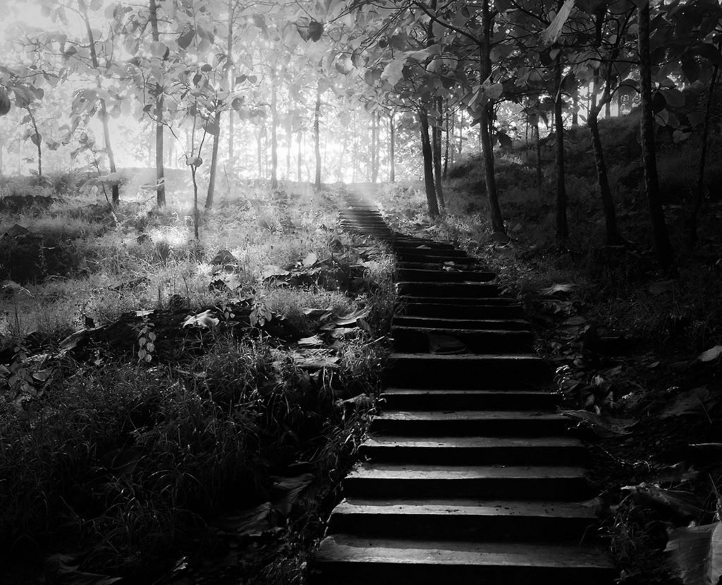 Benefits-of-Walking-Trails